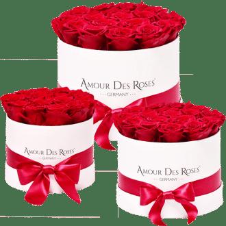 Infinity Rosen Rosen Box