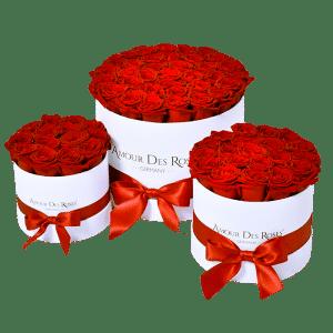 Natural Rosen Box